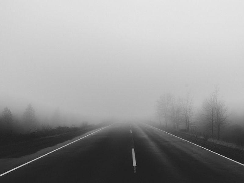 Na zdjęciu fragment drogi samochodowej spowitej we mgle. Na poboczu drzewa spowite we mgle.