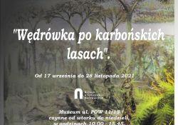 Powędruj karbońskimi lasami